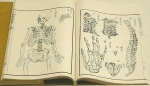 1774-1st Japanese Treatise on Western Anatomy.