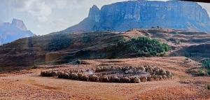 Zulu Kraal